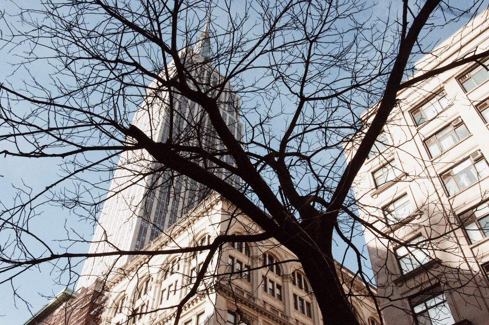 NewYork,NYC,SunnyInEveryCountry,SunnyInNewYork,TimesSquare,MadisonGarden,Travel,TravelTips,TheEmpireStateBuilding